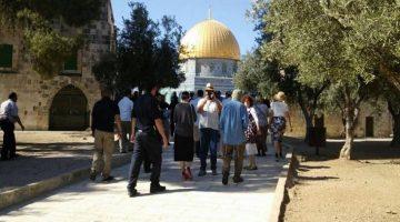 الاحتلال يقرر زيادة ساعة يوميا لاقتحام المستوطنين للأقصى.